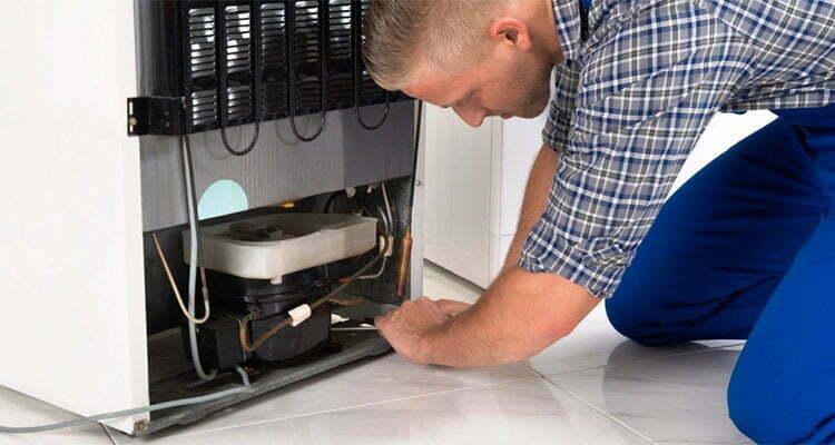 Freezer Repair & Service 1