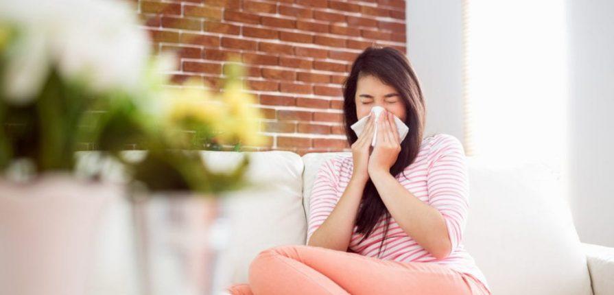 How to Control Problematic Indoor Allergens